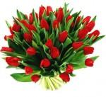 kwiaty-na-dzien-kobiet
