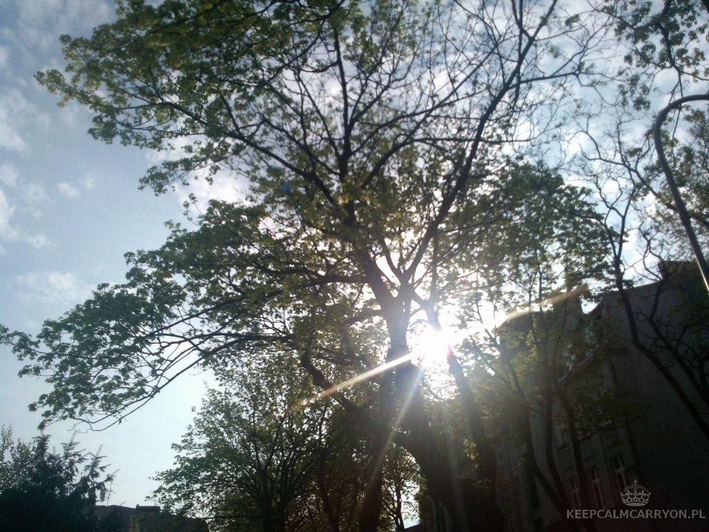 keepcalmcarryon-miesiąc w zdjęciach kwiecień 14 (18)