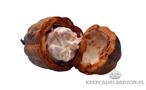 keepcalmcarryon-cocoa_nut