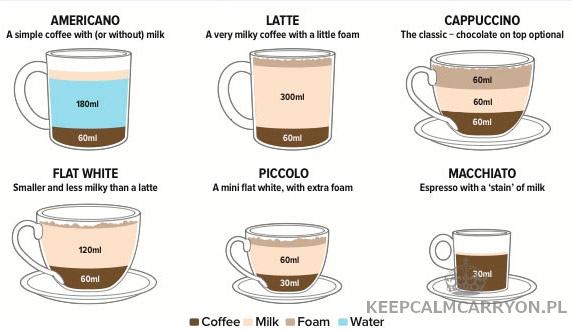coffee-infographic-307533