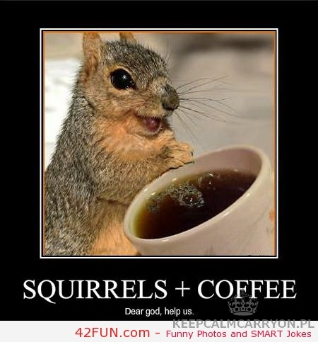 funny-squirels-and-coffee