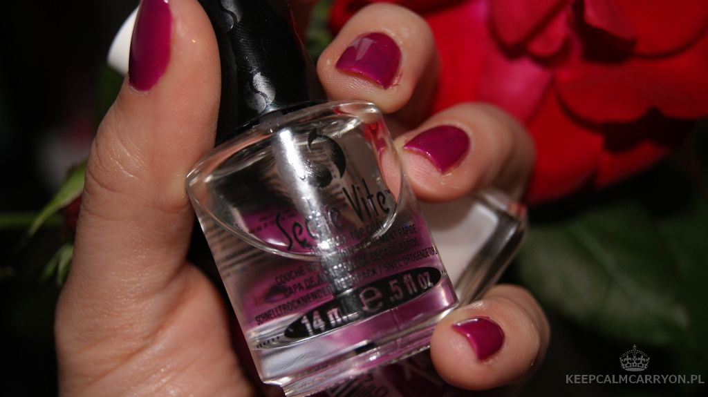 keepcalmcarryon-lakieromania sally hansen plum (4)