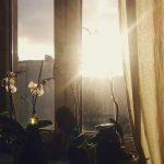 Miesiąc w zdjęciach – styczeń 2015