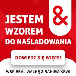 widget_blog