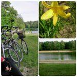 Miesiąc w zdjęciach – czerwiec 2015