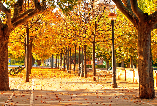 Top-5-Destinations-for-an-Autumn-City-Break