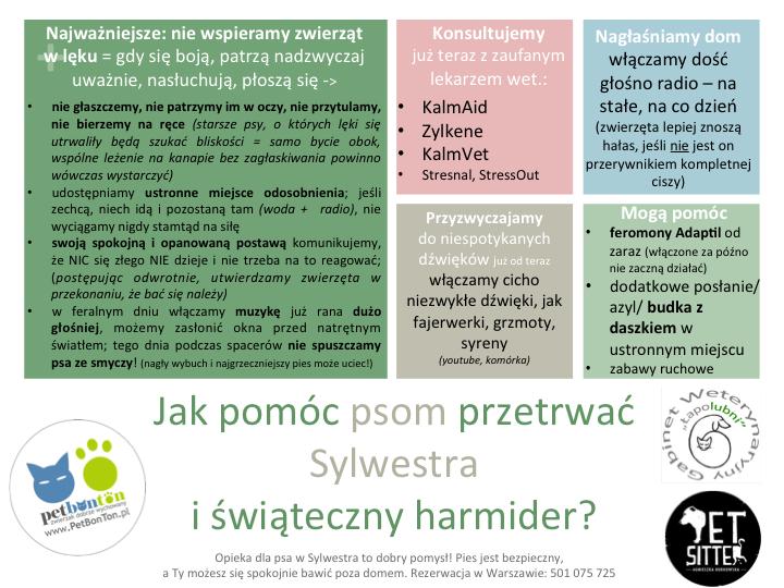 2013-PBT-ŁŁ-PS-SylwesterPsy