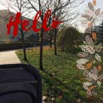 Miesiąc w zdjęciach: Listopad 2017